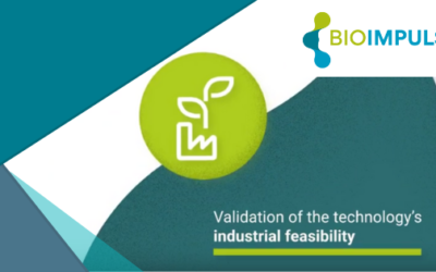 A first milestone validated for the bioimpulse project